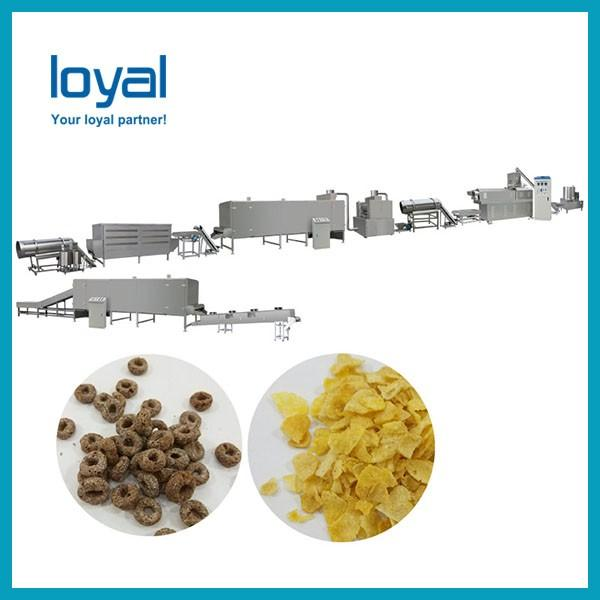 Hot Sale Corn Flakes Snack Food Machine Breakfast Cereal Making Equipmen #3 image