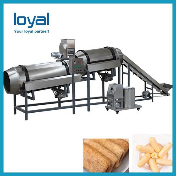 Twin Screw Wheat Flour Corn Puff Food Snack Extruder Machine #1 image