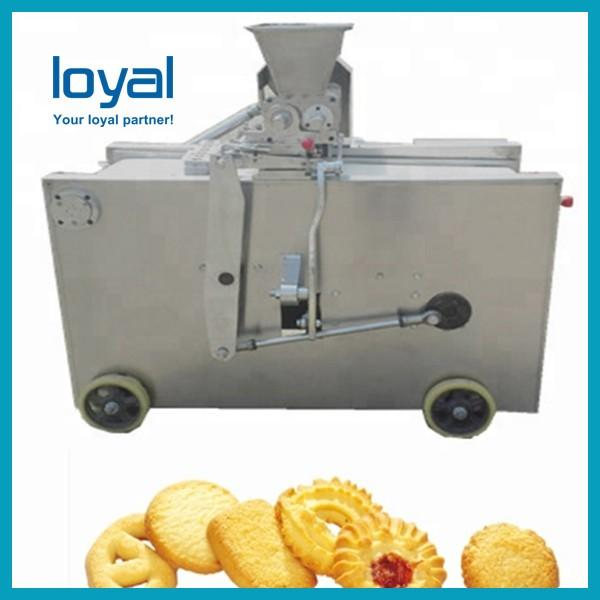Biscuits production process biscuit lady finger machine #1 image